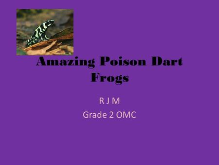 Amazing Poison Dart Frogs R J M Grade 2 OMC. Animal Families Poison dart frogs group of family is amphibians. I know that it's an amphibian, because they.