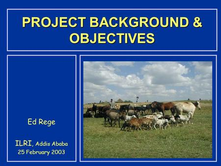 PROJECT BACKGROUND & OBJECTIVES Ed Rege ILRI, Addis Ababa 25 February 2003.