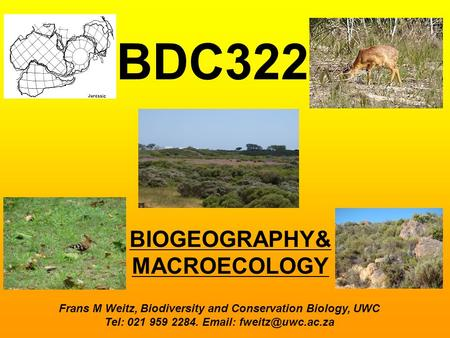 BIOGEOGRAPHY& MACROECOLOGY BDC322 Frans M Weitz, Biodiversity and Conservation Biology, UWC Tel: 021 959 2284.