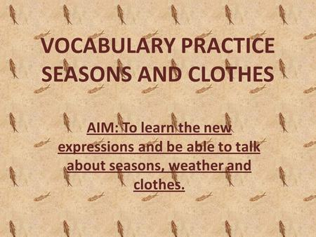 VOCABULARY PRACTICE SEASONS AND CLOTHES AIM: To learn the new expressions and be able to talk about seasons, weather and clothes.