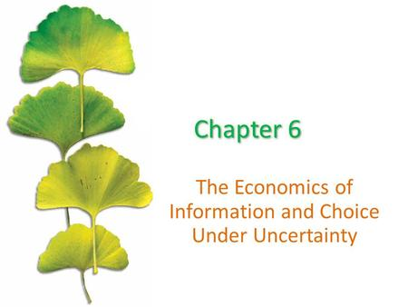 The Economics of Information and Choice Under Uncertainty.
