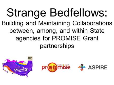 Strange Bedfellows: Building and Maintaining Collaborations between, among, and within State agencies for PROMISE Grant partnerships.