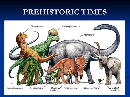 PREHISTORIC TIMES. A LONG LONG TIME AGO What was life like before written time? What was life like before written time? Prehistoric Prehistoric Time before.