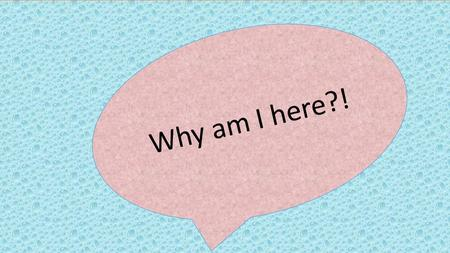 Why am I here?!. What do you expect?! Who Am I…