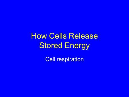 How Cells Release Stored Energy Cell respiration.