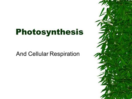 Photosynthesis And Cellular Respiration. Photosynthesis  Process where plants and other organisms use the sun's energy to convert carbon dioxide and.