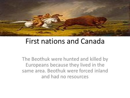 First nations and Canada The Beothuk were hunted and killed by Europeans because they lived in the same area. Beothuk were forced inland and had no resources.