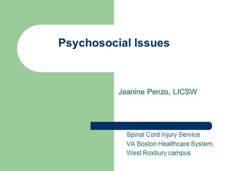 Psychosocial Issues Jeanine Penzo, LICSW Spinal Cord Injury Service VA Boston Healthcare System, West Roxbury campus.
