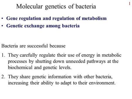 1 Molecular genetics of bacteria Gene regulation and regulation of metabolism Genetic exchange among bacteria Bacteria are successful because 1.They carefully.