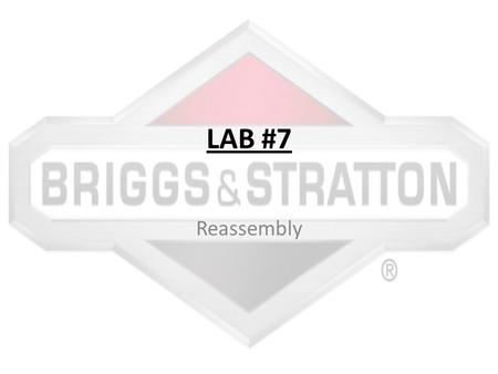 LAB #7 Reassembly. Get Check Off Sheet Before you start, make sure you get a reassembly packet from Mrs. Winegar. If you do not have her check your work.