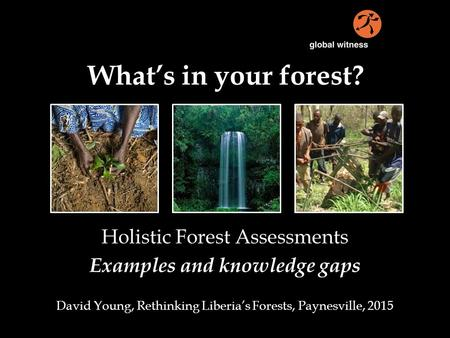 What's in your forest? Holistic Forest Assessments Examples and knowledge gaps David Young, Rethinking Liberia's Forests, Paynesville, 2015.