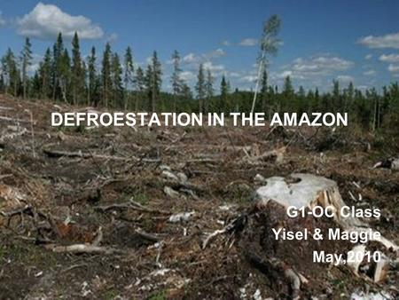 DEFROESTATION IN THE AMAZON