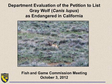 Department Evaluation of the Petition to List Gray Wolf (Canis lupus) as Endangered in California Fish and Game Commission Meeting October 3, 2012.