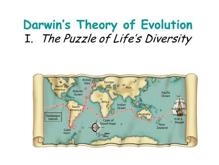 Darwin's Theory of Evolution I. The Puzzle of Life's Diversity.