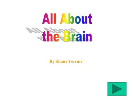 By Shane Ferrari What the Brain Does What the Brain Is Made Of Animal Brains.