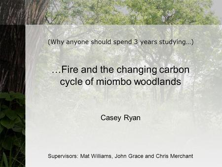 (Why anyone should spend 3 years studying…) …Fire and the changing carbon cycle of miombo woodlands Casey Ryan Supervisors: Mat Williams, John Grace and.