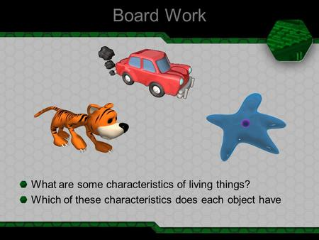 Board Work What are some characteristics of living things? Which of these characteristics does each object have.