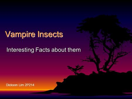 Vampire Insects Interesting Facts about them Dickson Lim 2P214.