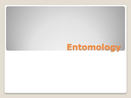 Entomology. Definition of Entomology Study of insect life on or near bodies to determine the time and/or date of death.