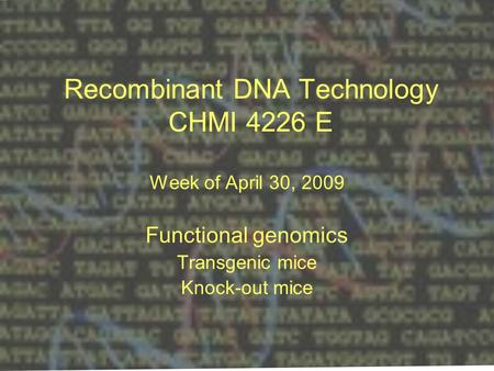 Recombinant DNA Technology CHMI 4226 E Week of April 30, 2009 Functional genomics Transgenic mice Knock-out mice.