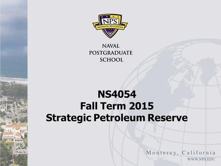 NS4054 Fall Term 2015 Strategic Petroleum Reserve.