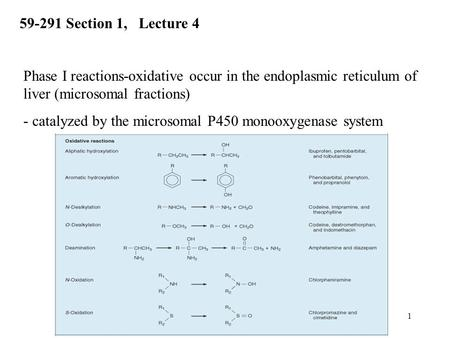 1 Phase I reactions-oxidative occur in the endoplasmic reticulum of liver (microsomal fractions) - catalyzed by the microsomal P450 monooxygenase system.