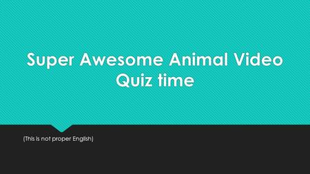 Super Awesome Animal Video Quiz time (This is not proper English)