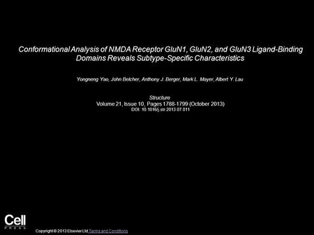 Conformational Analysis of NMDA Receptor GluN1, GluN2, and GluN3 Ligand-Binding Domains Reveals Subtype-Specific Characteristics Yongneng Yao, John Belcher,