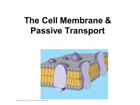 The Cell Membrane & Passive Transport. The cell membrane is the boundary that separates the living cell from its surroundings Life has an inside and an.