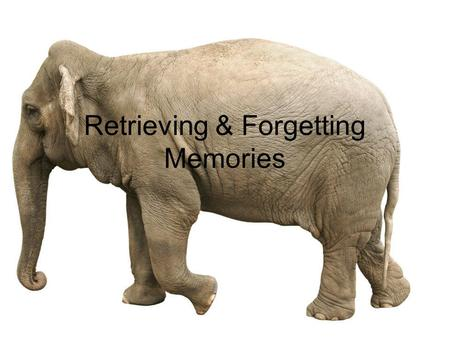 Retrieving & Forgetting Memories. Memory Construction Leveling: Simplifying material, shortening Sharpening: Highlighting or overemphasizing some details.