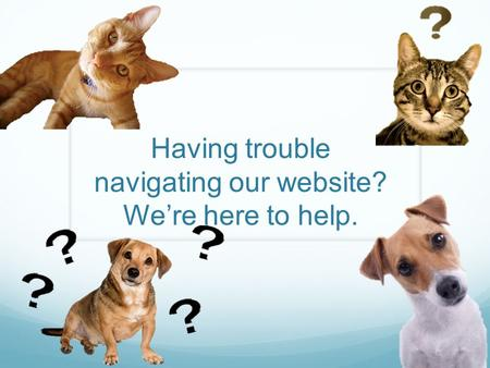 Having trouble navigating our website? We're here to help.