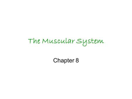 The Muscular System Chapter 8. All movement occurs because muscles use energy to contract.