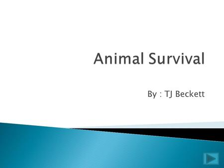By : TJ Beckett  Like humans, animals struggle everyday to survive. Some have evolved different features to hunt or avoid predators, while others.