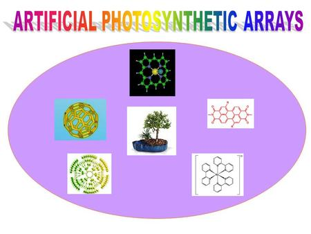 Contents:  Introduction.  Natural Photosynthesis.  Antenna Effect.  Chromophores used in Artificial photosynthetic arrays:  Porphyrins  Dendrimers.