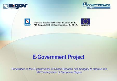 E-Government Project Penetration in the E-government of Czech Republic and Hungary to improve the I&CT enterprises of Campania Region.
