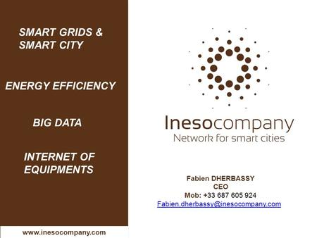 Fabien DHERBASSY CEO Mob: +33 687 605 924 SMART GRIDS & SMART CITY ENERGY EFFICIENCY BIG DATA  INTERNET.