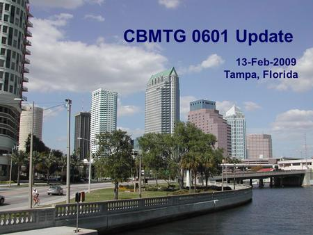 1 CBMTG 0601 Update 13-Feb-2009 Tampa, Florida. 22 Key Information Pivotal Phase III trial comparing G-PB with G-BM (experimental arm) 230 recipient-donor.