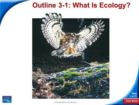 End Show Slide 1 of 21 Copyright Pearson Prentice Hall O Outline 3-1: What Is Ecology?