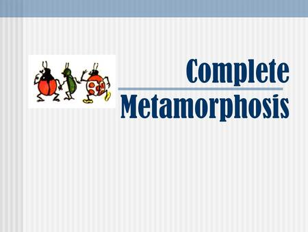 Complete Metamorphosis. What is metamorphosis? Metamorphosis refers to the way that certain organisms develop, grow, and change form. Metamorphosis actually.