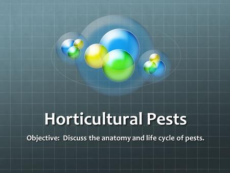 Horticultural Pests Objective: Discuss the anatomy and life cycle of pests.