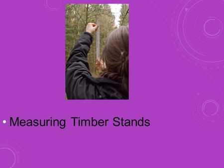 Measuring Timber Stands NEXT GENERATION SCIENCE / COMMON CORE STANDARDS ADDRESSED! HSNQ.A.1 Use units as a way to understand problems and to guide the.