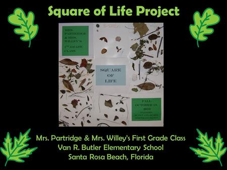 Square of Life Project Mrs. Partridge & Mrs. Willey's First Grade Class Van R. Butler Elementary School Santa Rosa Beach, Florida.