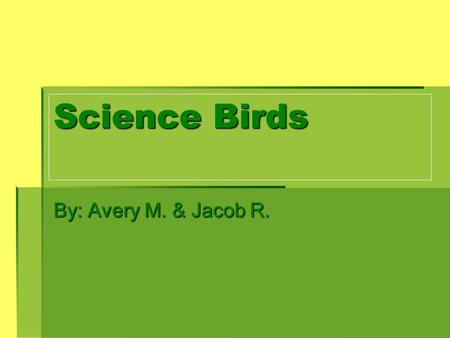 Science Birds By: Avery M. & Jacob R.. BIRD BEAKS Nut Cracking Beak - The pointed tip pulls pieces of shell away Fish Spearing – The long narrow beak.