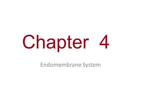 Chapter 4 Endomembrane System.