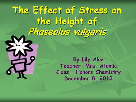 The Effect of Stress on the Height of Phaseolus vulgaris By Lily Aloe Teacher: Mrs. Atomic Class: Honors Chemistry December 8, 2013.