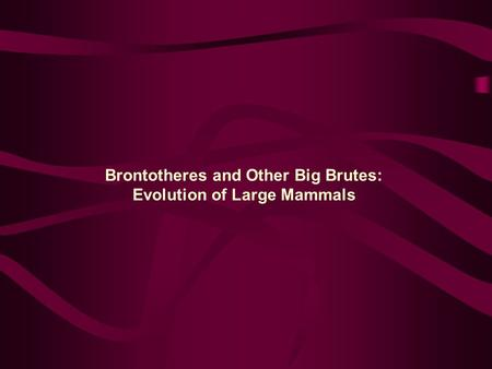 Brontotheres and Other Big Brutes: Evolution of Large Mammals.
