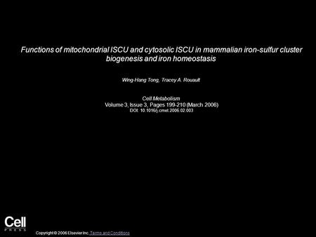 Functions of mitochondrial ISCU and cytosolic ISCU in mammalian iron-sulfur cluster biogenesis and iron homeostasis Wing-Hang Tong, Tracey A. Rouault Cell.