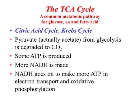 The TCA Cycle The TCA Cycle A common metabolic pathway for glucose, aa and fatty acid Citric Acid Cycle, Krebs Cycle Pyruvate (actually acetate) from glycolysis.