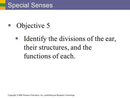 Copyright © 2006 Pearson Education, Inc., publishing as Benjamin Cummings Special Senses  Objective 5  Identify the divisions of the ear, their structures,