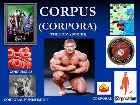 CORPUS (CORPORA) CORPORAL PUNISHMENT CORPORAL CORPUSCLES THE BODY (BODIES)